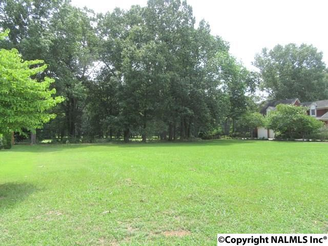 4410 Kiowa Trail, Decatur, AL 35603 (MLS #1071755) :: RE/MAX Alliance