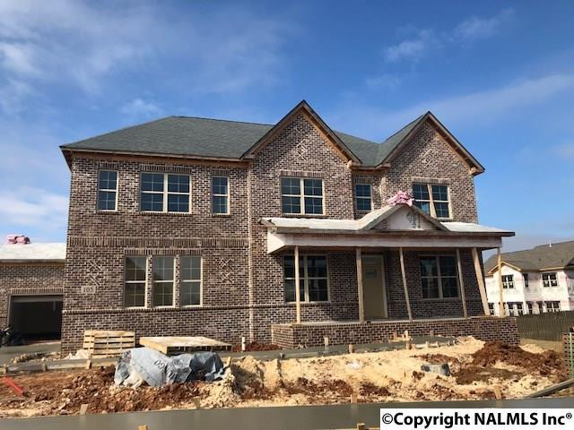 105 Count Fleet Court, Madison, AL 35756 (MLS #1073599) :: Amanda Howard Real Estate™