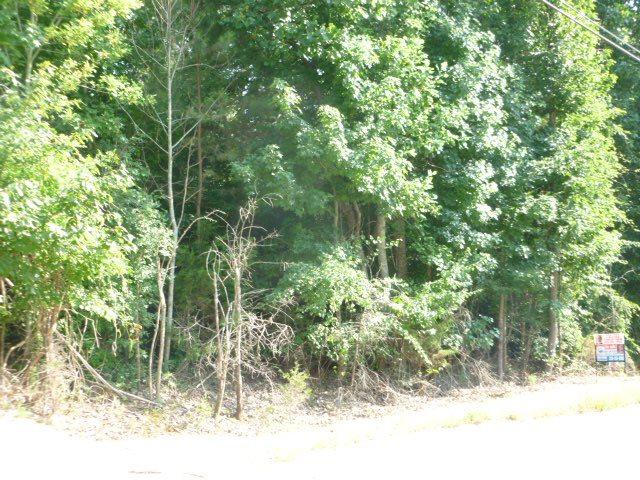 0 County Road 514, Trinity, AL 35650 (MLS #1074898) :: Weiss Lake Realty & Appraisals