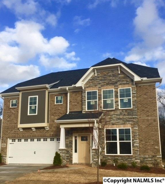 15206 Lakeside Trail, Huntsville, AL 35803 (MLS #1079636) :: Capstone Realty