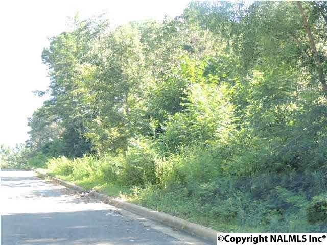 #19 Cade Circle, Leesburg, AL 35983 (MLS #1079767) :: Amanda Howard Sotheby's International Realty