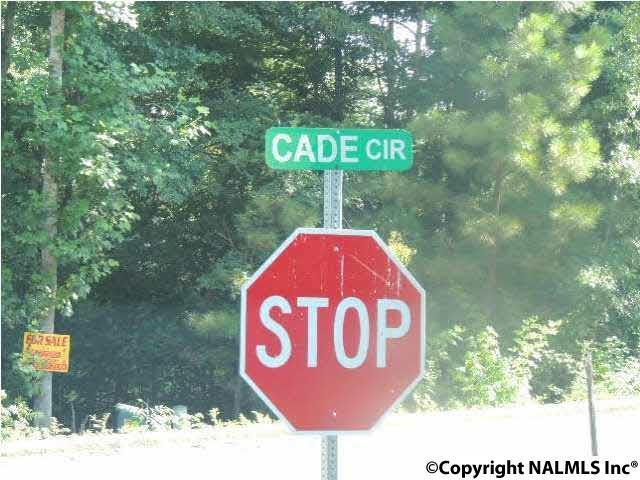#33 Cade Circle, Leesburg, AL 35983 (MLS #1079770) :: Amanda Howard Sotheby's International Realty
