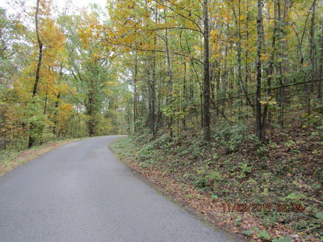 Hillside Trail, Gadsden, AL 35901 (MLS #1081677) :: Rebecca Lowrey Group