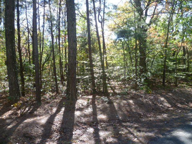 Lot 4 Long Hollow Circle, Fort Payne, AL 35968 (MLS #1082035) :: Intero Real Estate Services Huntsville