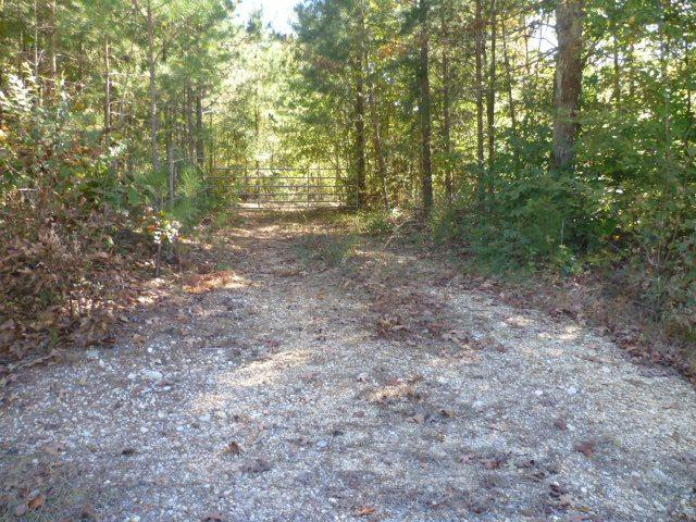 Lot 7 County Road 88, Fort Payne, AL 35968 (MLS #1082038) :: Weiss Lake Realty & Appraisals