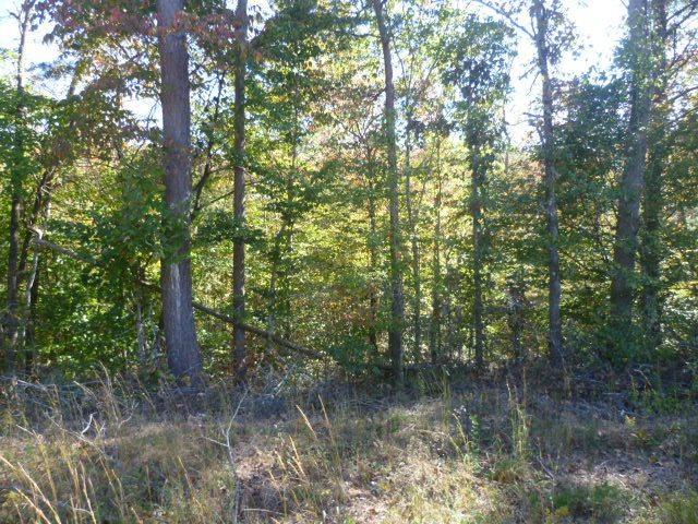 Lot 8 County Road 88, Fort Payne, AL 35968 (MLS #1082039) :: Intero Real Estate Services Huntsville