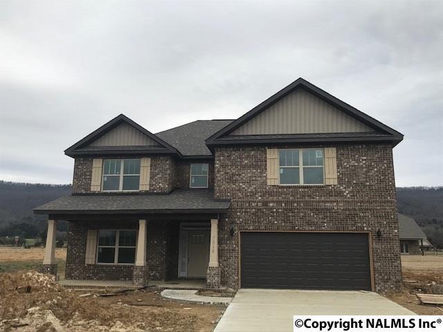 7510 Colibri Circle, Owens Cross Roads, AL 35763 (MLS #1084188) :: Amanda Howard Real Estate™