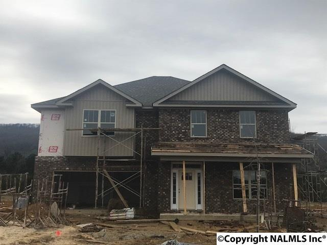 7496 Chaco Street, Owens Cross Roads, AL 35763 (MLS #1085682) :: Amanda Howard Real Estate™