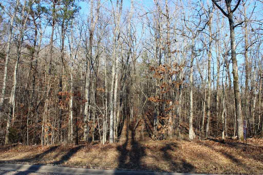 NA Raintree Drive - Photo 1
