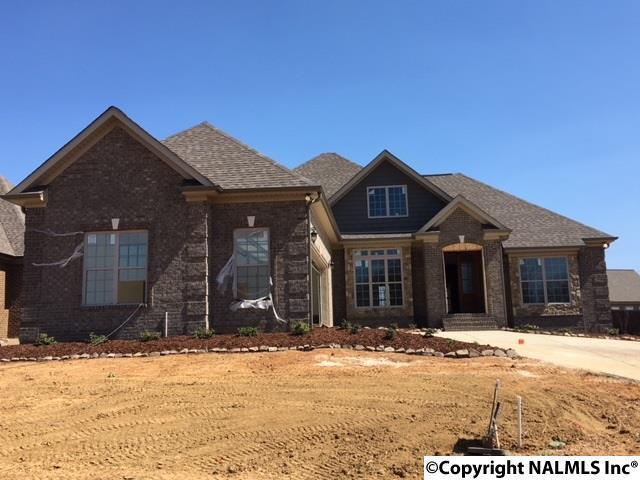22596 Bluffview Drive, Athens, AL 35613 (MLS #1087957) :: Amanda Howard Real Estate™