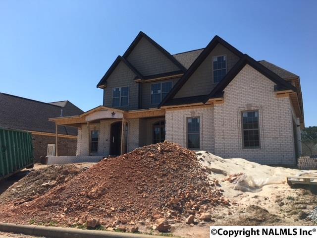 22699 Bluffview Drive, Athens, AL 35613 (MLS #1087961) :: Amanda Howard Real Estate™