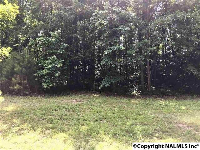 Lot 47 Seven Bark Drive, Cullman, AL 35058 (MLS #1095980) :: RE/MAX Distinctive | Lowrey Team