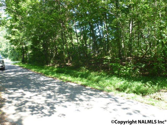 516 Sundale Lane, Fort Payne, AL 35967 (MLS #1096448) :: Intero Real Estate Services Huntsville