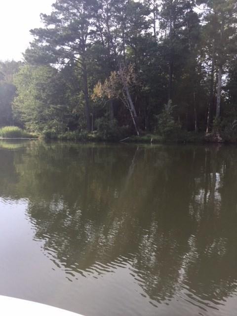 17 Lake Pointe Circle, Scottsboro, AL 35769 (MLS #1097988) :: RE/MAX Alliance