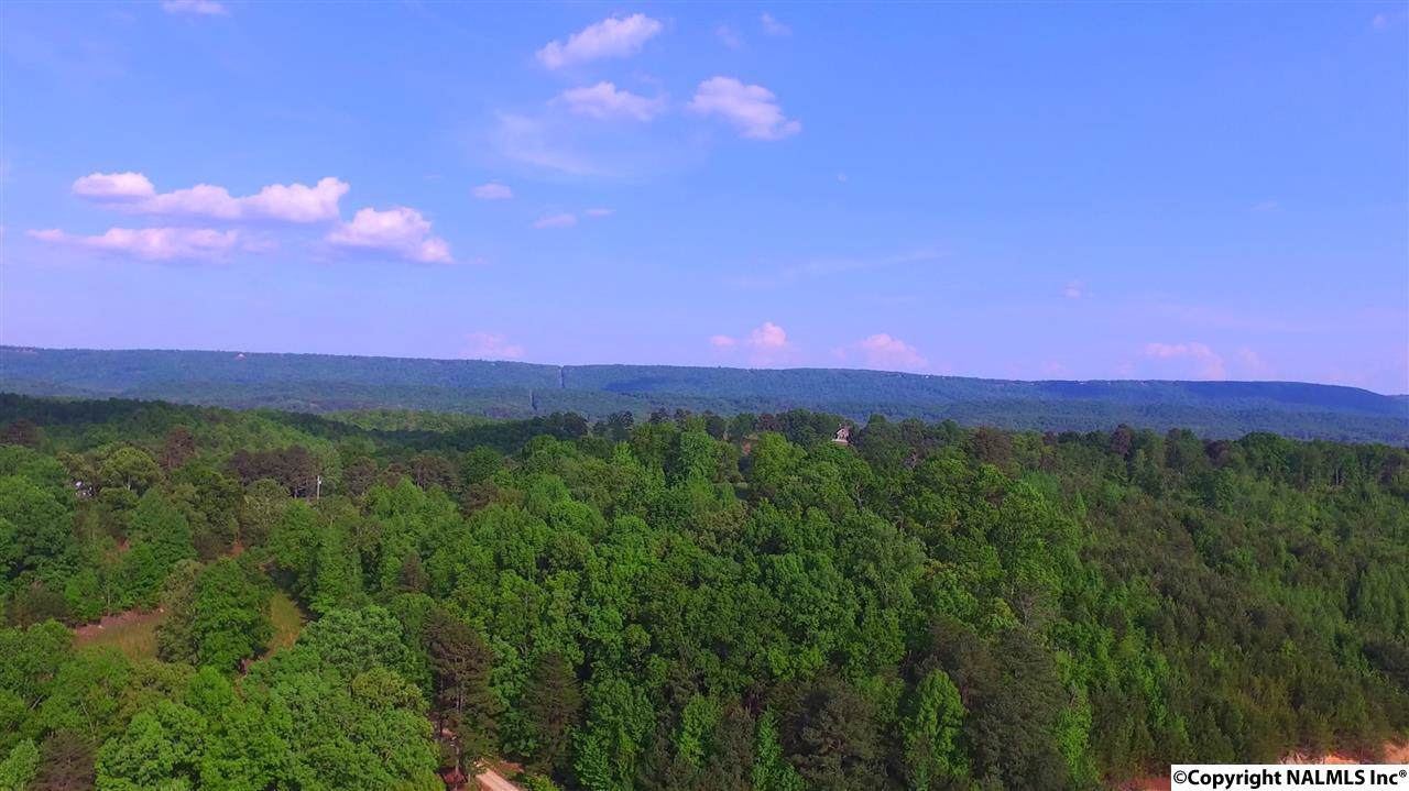 1571A County Road 751 - Photo 1