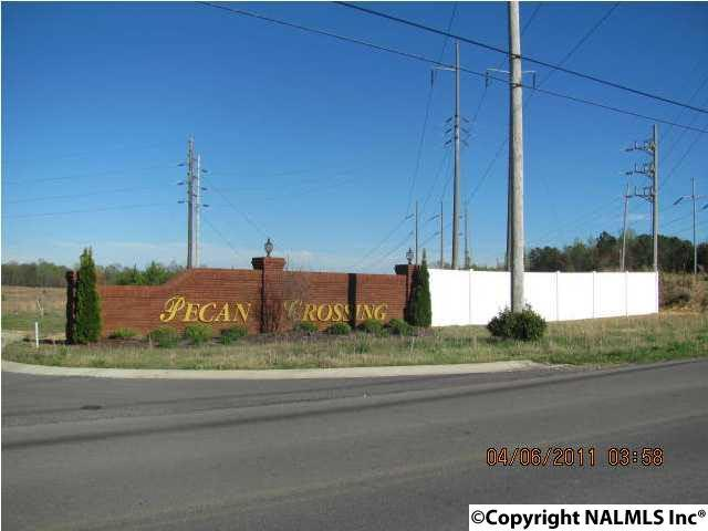 184 Bonny Brook Lane, Albertville, AL 35950 (MLS #1107919) :: Amanda Howard Sotheby's International Realty
