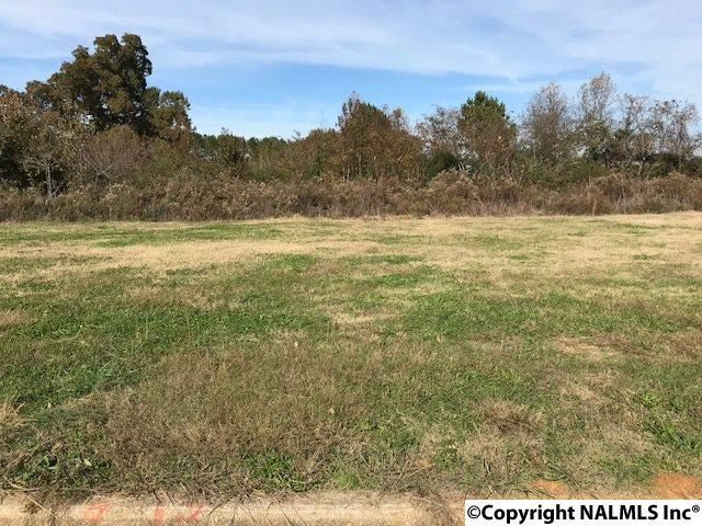 Lot 8 Commercial Drive, Athens, AL 35611 (MLS #1108971) :: MarMac Real Estate