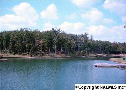 11 Winter Walk Way, Huntsville, AL 35803 (MLS #1111644) :: MarMac Real Estate