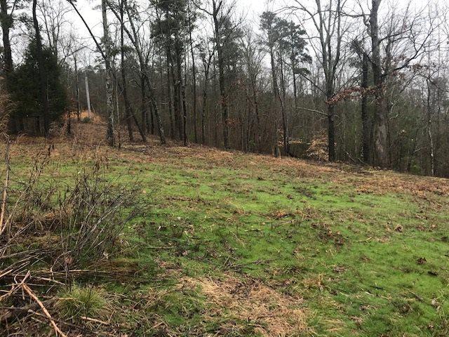 162 Lookout Mountain Drive, Scottsboro, AL 35969 (MLS #1111774) :: Intero Real Estate Services Huntsville
