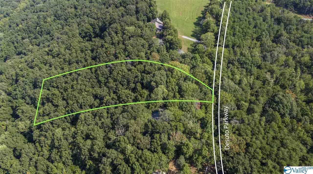 .90 acres County Road 89 - Photo 1