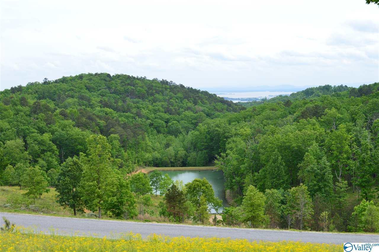 Lot 215 County Road 767 - Photo 1