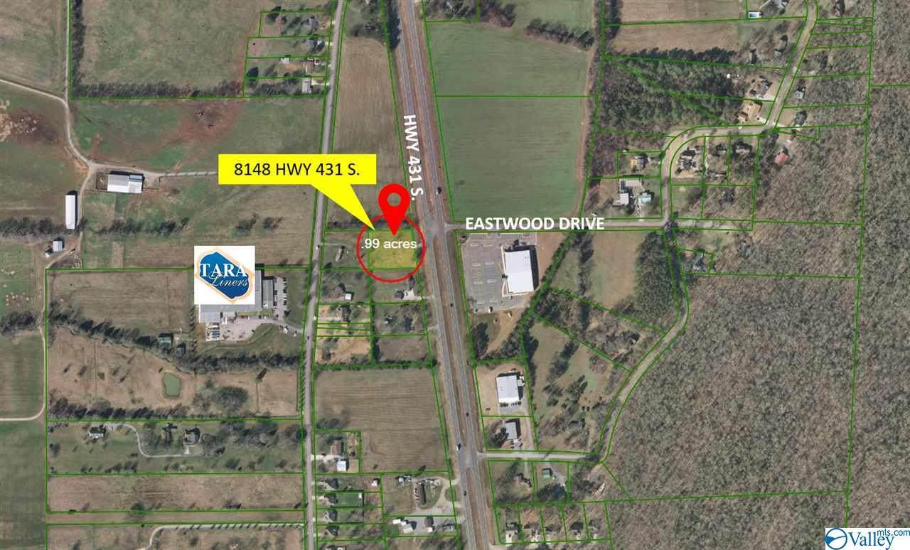 8148 Highway 431 South - Photo 1