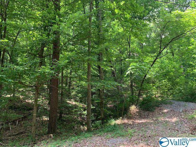 Owens Cross Roads, AL 35763 :: LocAL Realty