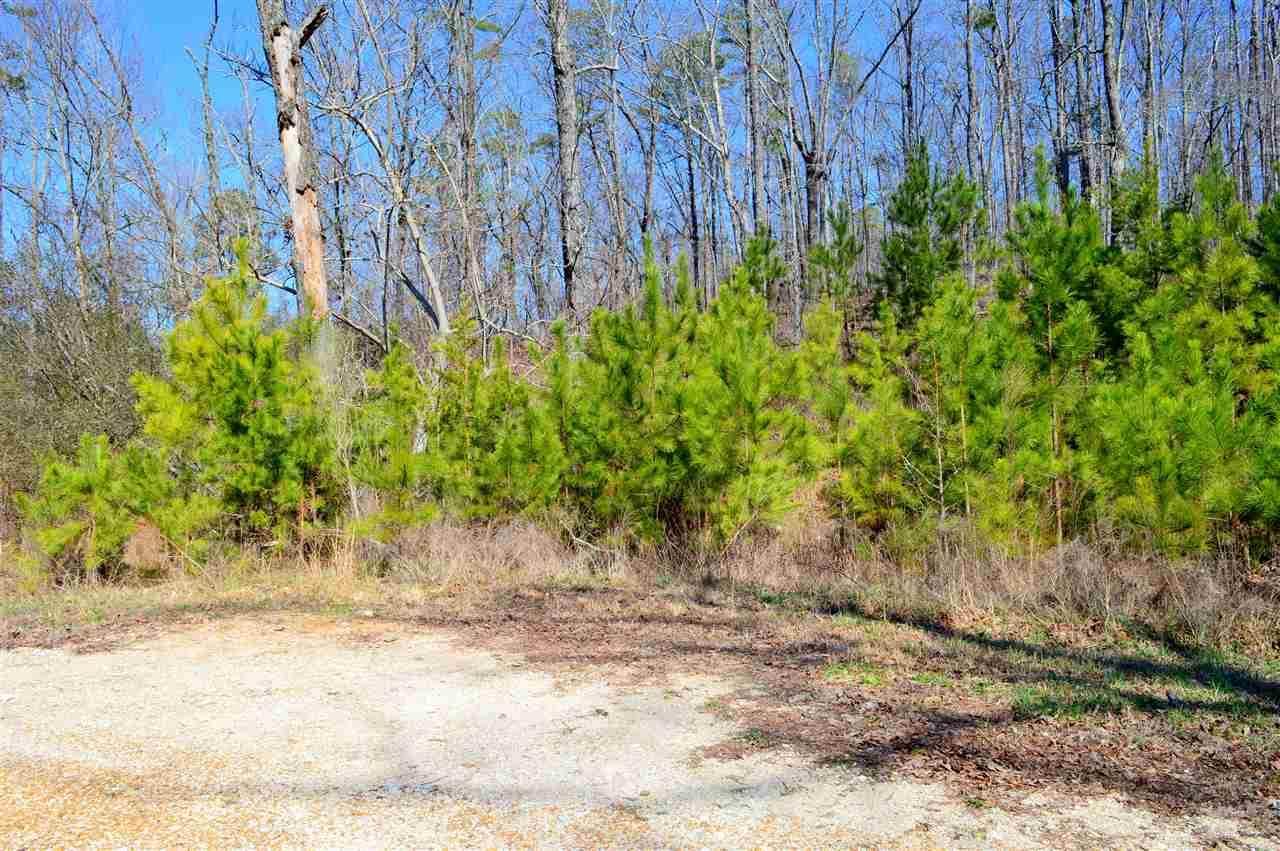 Lot 9 Paradise Ridge Road - Photo 1