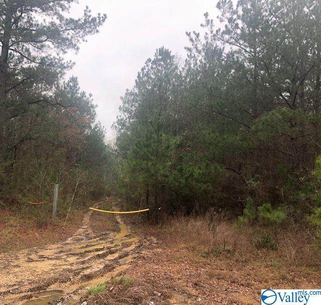 County Road 113, Centre, AL 35960 (MLS #1139594) :: Weiss Lake Alabama Real Estate