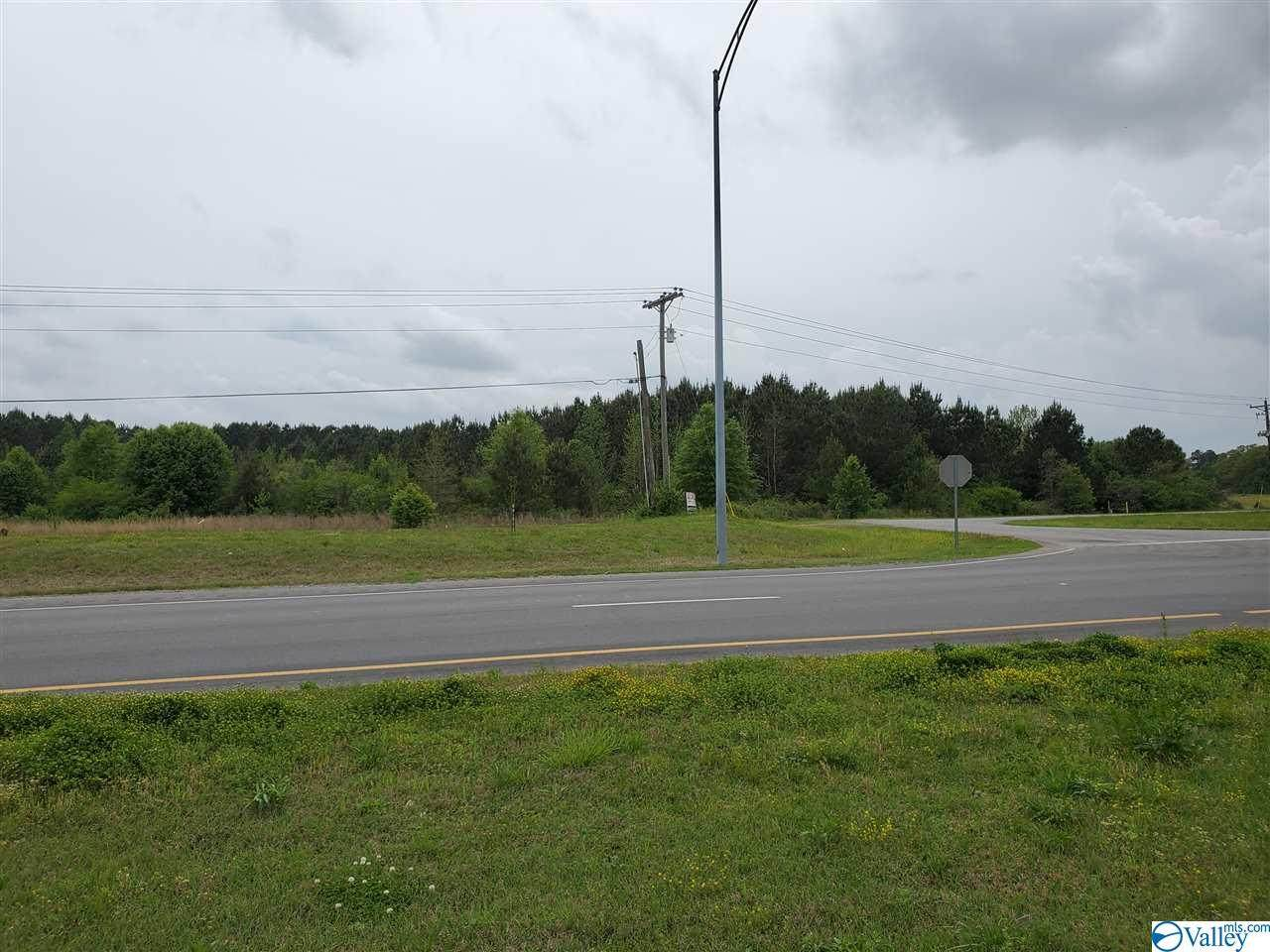 2380 Old Highway 411 - Photo 1
