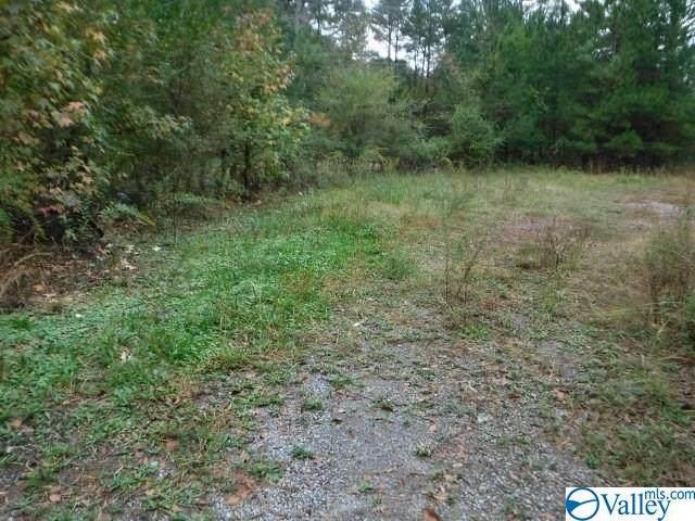 8650 County Road 29, Centre, AL 35960 (MLS #1155464) :: Rebecca Lowrey Group