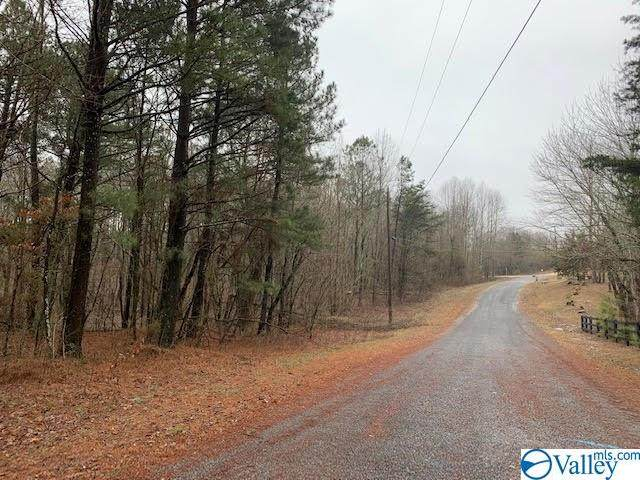 Lot 25 County Road 1025, Fort Payne, AL 35967 (MLS #1774926) :: Southern Shade Realty