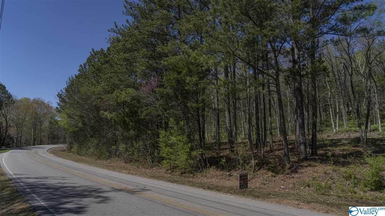 1657 Cherry Tree Road - Photo 1