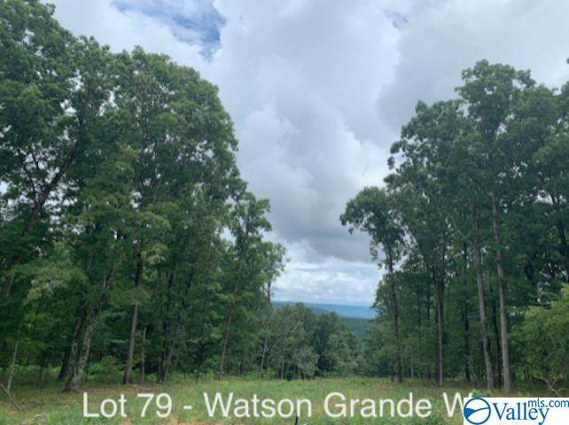 40 Watson Grande Way - Photo 1
