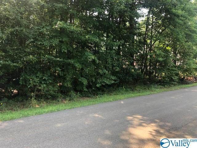 131 Whitt Haven Drive, Toney, AL 35773 (MLS #1787229) :: RE/MAX Distinctive | Lowrey Team