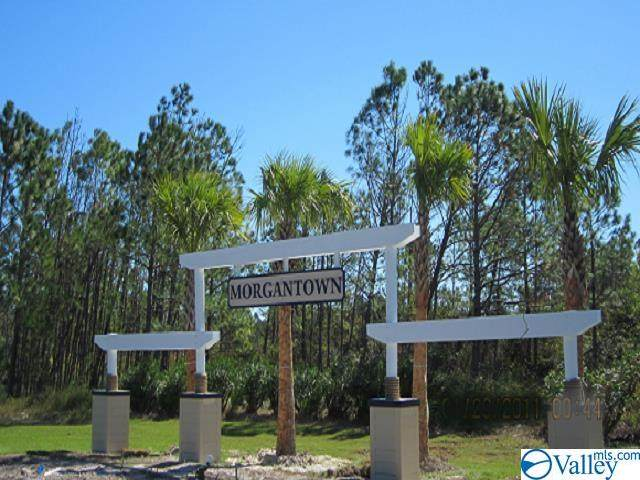 000000 Sawgrass Drive - Photo 1