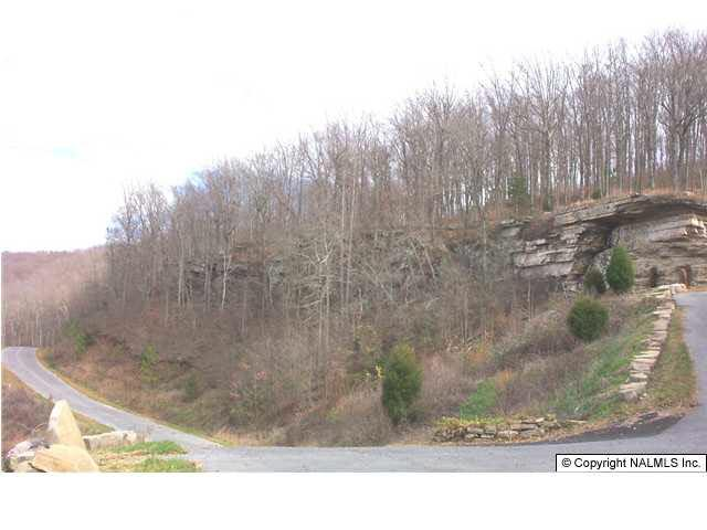Wilks Drive Lot 1, Fort Payne, AL 35967 (MLS #230178) :: RE/MAX Unlimited