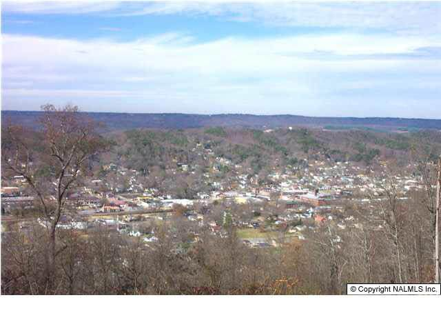 Rosewood Drive Lot 8, Fort Payne, AL 35967 (MLS #230183) :: Green Real Estate