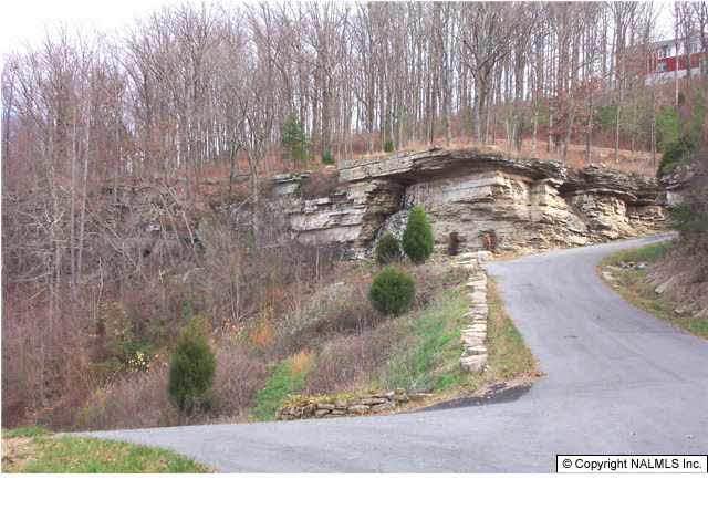Rosewood Drive Lot 9, Fort Payne, AL 35967 (MLS #230184) :: Green Real Estate
