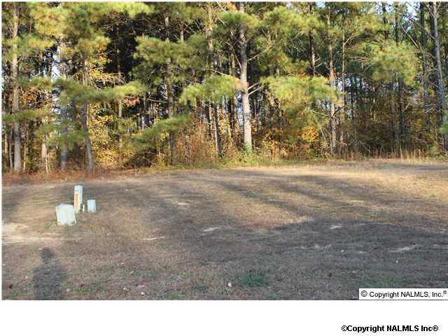 186 Woodmere Drive, Albertville, AL 35950 (MLS #386239) :: Amanda Howard Real Estate™