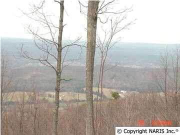 4250 Citadel Rock Road, Fort Payne, AL 35967 (MLS #393614) :: MarMac Real Estate