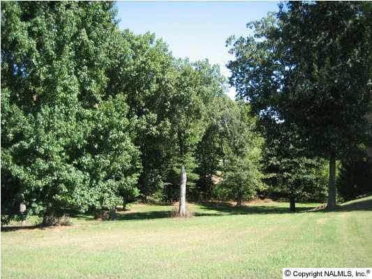 24 Brigadoon Drive, Athens, AL 35611 (MLS #549605) :: MarMac Real Estate