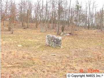 4245 Citadel Rock Road, Fort Payne, AL 35967 (MLS #565671) :: MarMac Real Estate