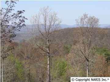 4611 Citadel Rock Road, Fort Payne, AL 35967 (MLS #580083) :: RE/MAX Distinctive | Lowrey Team