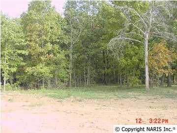 4621 Citadel Rock Road, Fort Payne, AL 35967 (MLS #600562) :: MarMac Real Estate