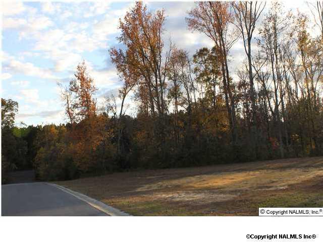 97 Woodmere Drive, Albertville, AL 35950 (MLS #616240) :: Amanda Howard Real Estate™
