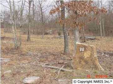 4235 Citadel Rock Road, Fort Payne, AL 35967 (MLS #659253) :: MarMac Real Estate