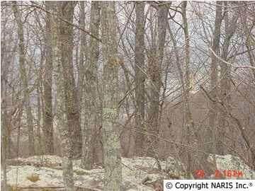 4150 Citadel Rock Road, Fort Payne, AL 35967 (MLS #725085) :: Southern Shade Realty