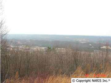 4220 Citadel Rock Road, Fort Payne, AL 35967 (MLS #755962) :: Southern Shade Realty
