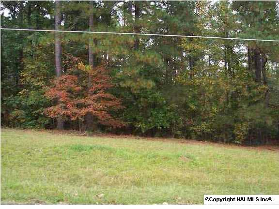 4 County Road 380, Centre, AL 35960 (MLS #785599) :: Weiss Lake Alabama Real Estate